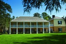 Ormond Plantation / Right down the street from Destrehan Plantation!