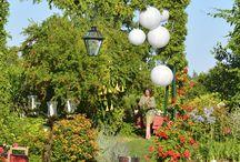 wedding time / Decoración para una boda en el campo. Resaltando sobretodo la naturaleza.