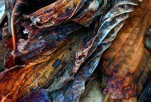 ❀...Blue & Copper / Rust