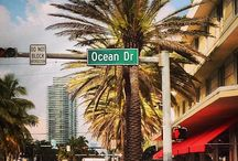 Things We Love About Miami