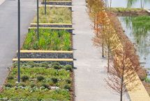 Urban agriculture / Urban farming in the lots, parks and roofs