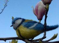 vogels van vilt / van ongesponnen schapenwol maak ik met de prikvilttechniek (ook wel droogvilten genoemd) vogels van vilt. Koolmeesje; pimpelmeesje; vink; roodborstje; goudhaantje. Specifieke vogels ook in opdracht.