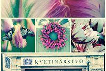 Galéria Kvetín / Kvetinárstvo