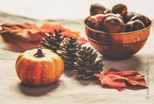 Autumn Inspiration / Autumn on the table with leaves, pine cones, acorns and pumpkins