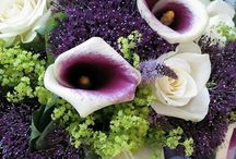 Residence Flowers by Phillo Flowers / Phillo Flowers presents our residence service - regular deliveries of beautiful flowers to London homes