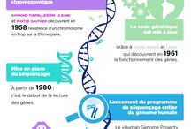 Sciences ≧◠◡◠≦