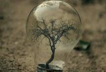 환경/지구온난화/친환경/환경오염