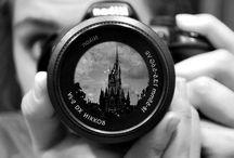Disney photographs