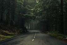 Nature / by Kiril Angelov