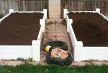 Gardening with Rachel