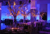 Joss&Ray Wedding Ideas / Just a place to brain storm ideas and show others potential color schemes etc! / by Jocelyn Marshall