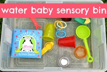 Home Schooling Sensorial / by Amy Williams
