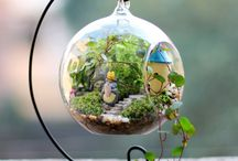 Terrariums&nature