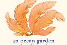 An Ocean Garden: The Secret Life of Seaweed / Josie's seventh book.  Spectacular images of seaweed and kelp. Learn about seaweed color and why it is so healthy and how it survives the rise and fall of the tide.
