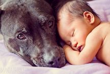 Babies & Dogs
