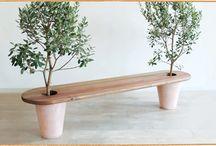 Idée plantes