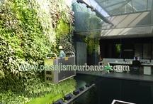 Jardin Vertical interior oficina multinacional, Elche (Alicante)  / Jardin vertical para una conocida multinacional española en Elche