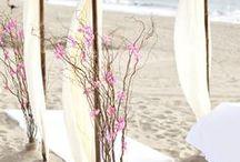 Beach Wedding Ideas / by Sarah Christine