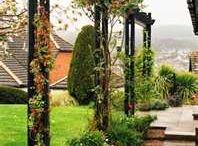 Trädgård / Trädgård
