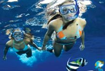Maui Tours and Activities