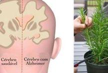 Alzheimer