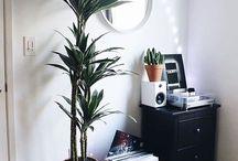 Home decor/Interior design