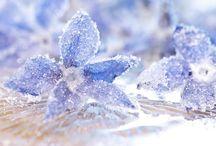 Кристаллы выращиваем
