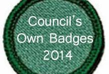 Girl Scout Patches / by Misty Knaack-Coulson