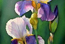 Floral painting / inspiration gardening