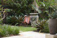 Client Garden Tropical