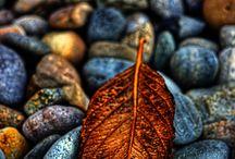 Podzimní...........