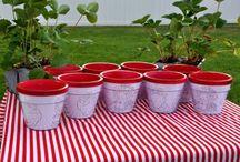 strawberry shortcake party ideas / by Jennifer Hill