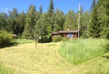 ✽ Swedish homes