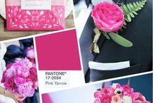 wedding colour decoration