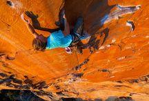 Climbing / by Megan Riley