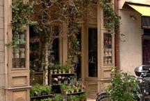 Virág üzletek - Flower shops