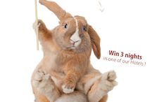 """Draw me a bunny / Send us your cutest «bunny» drawing to drawmeabunny@warwickhotels.com, and you may win a 3 nights stay at Warwick Hotel Dubai, The Allerton Hotel Chicago or Hôtel Westminster.   Get the biggest number of « Like » on your drawing to win. You have until April 27th to send us your """"bunny"""". So, are you ready to draw ?   Rules of the contest >> http://ow.ly/vGJqR   #contest #funny #draw #funnycontest #giveaway #freenights #warwickhotels #hotels #hotelcontest #eastercontest #drawing / by Warwick Hotels"""