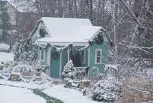 Snowed In / by Beth Brohl