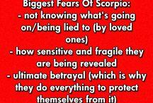 Understanding A Scorpio