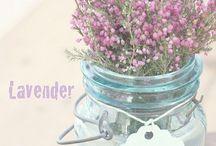 花瓶 生け花