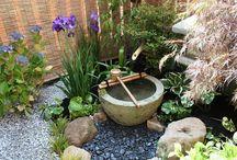 ogród - oczko wodne