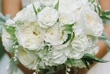 White/Ivory Weddings / by Akito Floral Design