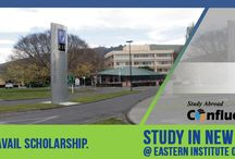 Colleges in New Zealand / Study in one of the top universities of New Zealand