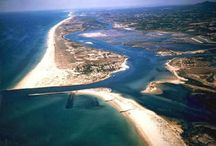 Ria Formosa Nature Reserve / The nature in the protected area south of Algarve with its salt marshes, sandy islands, birds and other wild life