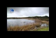 Vídeos Casa Grande de Fuentemayor