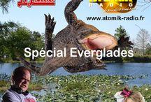 DJ SHOO- SPECIAL EVERGLADES / Crocodile  en feu!!!  Ce vendredi 1 mai sur les ondes d' Atomik Radio  18h00 (minuit en Europe) www.atomik-radio.fr
