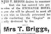 Theresa Briggs
