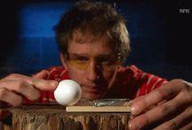 Egérfogó és tojás