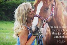 Horses Quotes