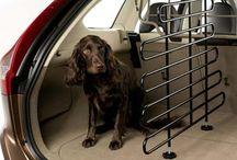 Acessórios para cães / Montadoras lançam acessórios para o transporte de cães